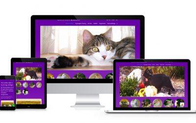 Referenz Tierkommunikation Allesspricht